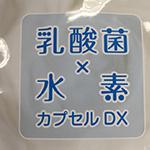 乳酸菌×水素カプセルDX